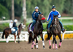 OCT 29: Breeders' Cup Juvenile Fillies entrant Lazy Daisy, trained by Doug F. O'Neill,  gallops at Santa Anita Park in Arcadia, California on Oct 29, 2019. Evers/Eclipse Sportswire/Breeders' Cup