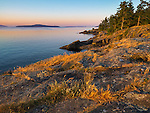 Saltspring Island, British Columbia:<br /> Dawn light on rocky coast of Beaver Point and Swanson Channel, Ruckle Provincial Park