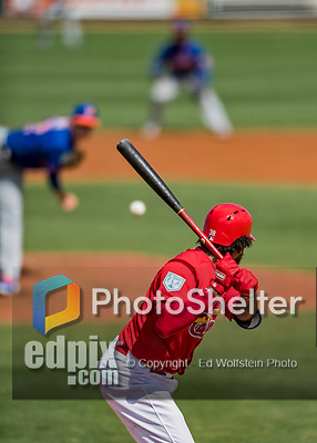 28 February 2019: St. Louis Cardinals fielder Jose Martinez at bat during a Spring Training game against the New York Mets at Roger Dean Stadium in Jupiter, Florida. The Mets defeated the Cardinals 3-2 in Grapefruit League play. Mandatory Credit: Ed Wolfstein Photo *** RAW (NEF) Image File Available ***