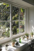 Pots of mixed herbs grow on the kitchen window sill overlooking the garden