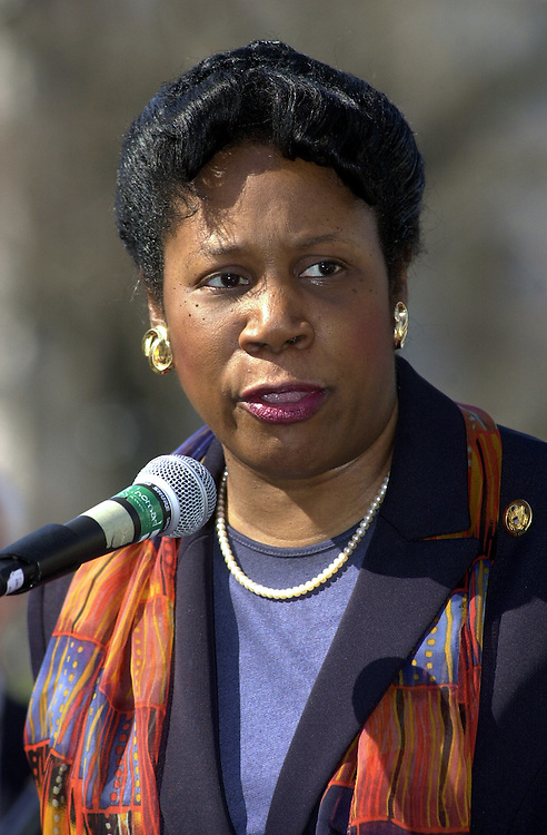 6rally040501 -- Rep. Shelia Jackson Lee, D-TX, speaks at a Health Black Caucus Rally to launch a new Congressional Universal Health Care Task Force, on the East Lawn Thursday