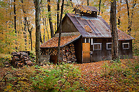 "A sugar house is seen just north of Quebec city October 6, 2009. A sugar house (also known as a sap house, sugar shack, sugar shanty, or ""cabane a sucre"") is a small cabin or shack where sap collected from sugar maple trees is boiled into maple syrup."