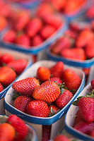 Europe/France/Provence-Alpes-Côte d'Azur/Alpes-Maritimes/Cannes: Marché Forville: Fraises de Carpentras //  //    Europe, France, Provence-Alpes-Côte d'Azur, Alpes-Maritimes, Cannes:  Forville market Carpentras strawberries