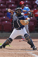Cedar Rapids Kernels catcher David Banuelos (9) in action against the Peoria Chiefs at Veterans Memorial Stadium on June 17, 2018 in Cedar Rapids, Iowa. The Chiefs won 12-3.  (Dennis Hubbard/Four Seam Images)