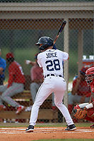 Detroit Tigers Corey Joyce (28) at bat during an Instructional League game against the Philadelphia Phillies on September 19, 2019 at Tigertown in Lakeland, Florida.  (Mike Janes/Four Seam Images)