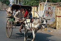 Indien, Kota (Rajasthan), Tonga (Pferdewagen)
