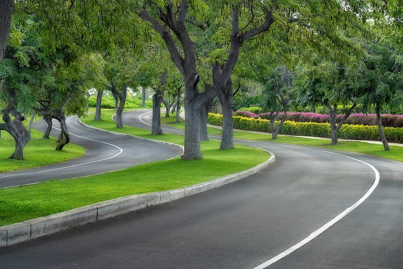 Road in Waikoloa. Hawaii, the big island. The island of Hawaii