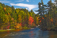 Autumn on Dryberry Creek<br />