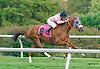 Odlum winning at Delaware Park on 10/17/15