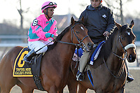 Calibrachoa (no. 5), ridden by Cornelio Velasquez and trained by Todd Pletcher, holds off Caleb's Posse (no. 6) and wins the 37th running of the grade 3 Tom Fool Handicap for three year olds and upward on March 03, 2012 at Aqueduct Race Track in Ozone Park, New York.  (Bob Mayberger/Eclipse Sportswire)