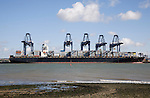 Cranes and container ships at Trimley Docks part of the Port of Felixstowe, Britain's busiest container port, from Shotley, Suffolk, England
