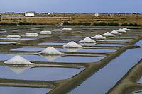 Europe/France/Pays de la Loire/85/Vendée/Ile de Noirmoutier: Les marais salants