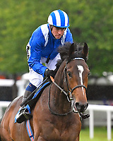 Moghram ridden by Jim Crowley goes down to the start  of The Sorvio Insurance Brokers Maiden Stakes during Evening Racing at Salisbury Racecourse on 11th June 2019