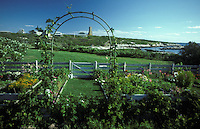 Celia Thaxter's recreted garden, Appledore Island, Building of the Shoals Marine Laboratory in the background. Isles of Shoals, Maine..Photograph by Peter E. Randall