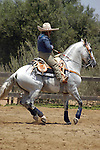 MEXICAN HORSE RIDER at the ANNUAL RODEO