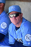 Wilmington Blue Rocks manager Darryl Kennedy (8) in the dugout before a game against the Myrtle Beach Pelicans on April 27, 2014 at Frawley Stadium in Wilmington, Delaware.  Myrtle Beach defeated Wilmington 5-2.  (Mike Janes/Four Seam Images)