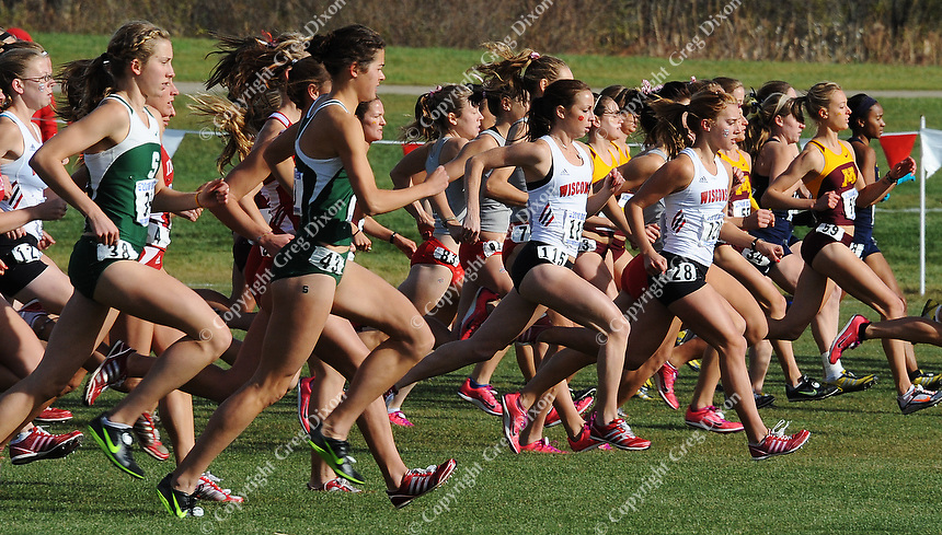Caitlin Comfort (115), Emily Sisson (128) and the Badger women's cross country team start the 6K race in the Big Ten cross country championships on Sunday, 10/31/10, at Zimmer Cross Country Course in Verona, Wisconsin