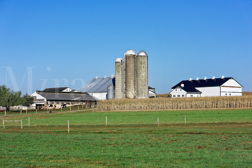 Amish farm, New Holland, Lancaster, Pennsylvania, USA
