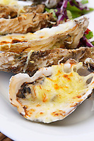 Bouzigues Languedoc. Oyster on half shell gratine with cheese. France. Europe.