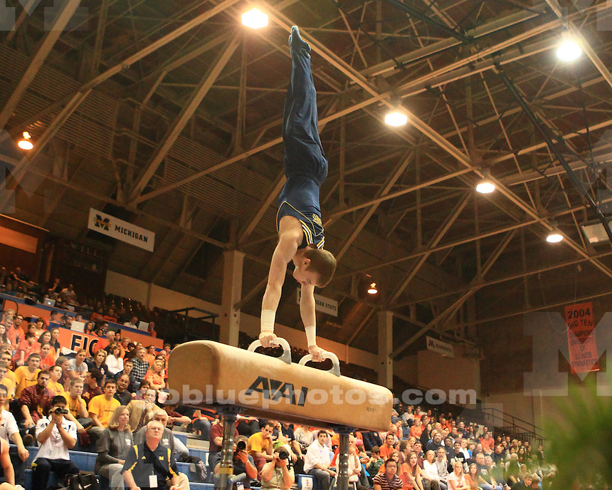 The University of Michigan men's gymnastics team at the 2011 Big Ten Individual Championships in Champaign, IL, April 2, 2011.