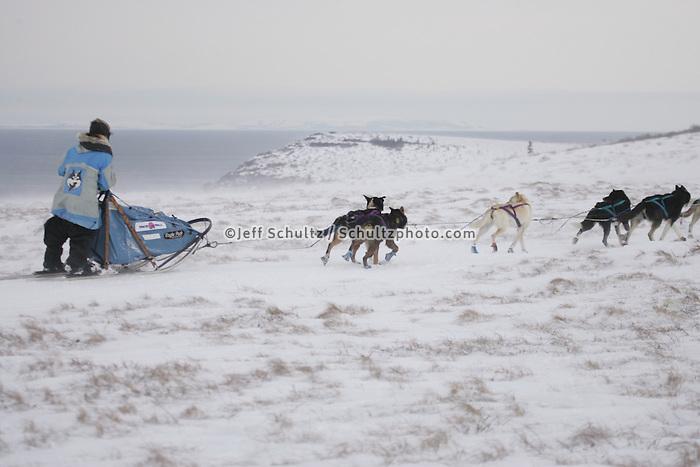 Dee Dee Jonrowe on the trail between Unalakleet and Shaktoolik near Egavik,  2005 Iditarod Trail Sled Dog Race.