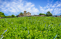 "Presidio La Bahí -  Presidio La Bahí in Goliad on a spring day with wild savia growing in front along with some other wildflowers.The history of the Presidio Nuestra Señora de Loreto de la Bahía, known more commonly as Presidio La Bahia,  is a fort constructed by the Spanish Army that became the nucleus of the modern-day city of Goliad, Texas, United States. Originally founded in 1721 on the ruins of the failed French Fort Saint Louis, the presidio was moved to a location on the Guadalupe River in 1726. In 1747, the presidio and its mission were moved to their current location on the San Antonio River. By 1771, the presidio had been rebuilt in stone and had become ""the only Spanish fortress for the entire Gulf Coast from the mouth of the Rio Grande to the Mississippi River The civilian settlement, later named Goliad, sprang up around the presidio in the late 18th century; the area was one of the three most important in Spanish Texas."