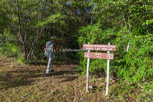 A birder enters a trail in La Bejada, Guanahacabibes National Park, Cuba.
