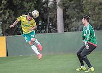 SÃO PAULO,SP,14.07.2016 - FUTEBOL-PALMEIRAS - Artur (e) e Vagner durante treino na Academia de Futebol na Barra Funda,zona oeste de São Paulo, na tarde desta quinta-feira (14). ( Foto : Marcio Ribeiro / Brazil Photo Prass)