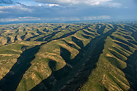 rolling hills of northwestern Colorado