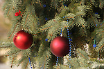 Outside ornaments hanging on an evergreen tree during the Holidays
