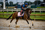 September 2, 2020:  Shedaresthedevil xercises as horses prepare for the 2020 Kentucky Derby and Kentucky Oaks at Churchill Downs in Louisville, Kentucky. The race is being run without fans due to the coronavirus pandemic that has gripped the world and nation for much of the year. Evers/Eclipse Sportswire/CSM