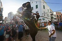 "Spain. Balearic Islands. Minorca (Menorca). Mahon. Rising horse at  ""Festes de la Mare de Déu de Gràcia"" during the traditional summer festival. The Menorquín is a breed of horse indigenous to the island and is closely associated with the doma menorquina style of riding. The riders wear black and white and most of their horses (adorned with ribbons and multi-coloured rosettes) are of the highly-considered Menorcan breed. The riders and their horses parade through the streets, and these magnificent and remarkably calm horses rear up on their hind-legs to the delight of the crowd. The most valued quality of Menorquín horse is its suitability for the traditional festivals of Menorca. Horses and riders are at the centre of local fiesta celebrations, in a tradition that may go back to the 14th century and incorporate elements of Christian, pagan and Moorish ritual. Some 150 riders participate in the festival in Mahón. Riders pass through the crowds, executing caracoles and repeatedly performing the bot. The aim of the 'bot' is for the horse to stand on its hind legs while keeping its head and shoulders relaxed and without tension; the more often it is performed and the greater the distance travelled, the greater the applause of the crowd. The elevade, in which the horse beats the air with the front hooves, is also a part of the ritual of the fiesta. Touching the horses is believed to bring good luck. Maó (in Catalan) and Mahón (in Spanish), written in English as Mahon, is a municipality, the capital city of the island of Menorca, and seat of the Island Council of Menorca. The city is located on the eastern coast of the island, which is part of the autonomous community of the Balearic. In Spain, an autonomous community is a first-level political and administrative division, created in accordance with the Spanish constitution of 1978, with the aim of guaranteeing limited autonomy of the nationalities and regions that make up Spain. 7.09.2019 © 2019 Didier Ruef"