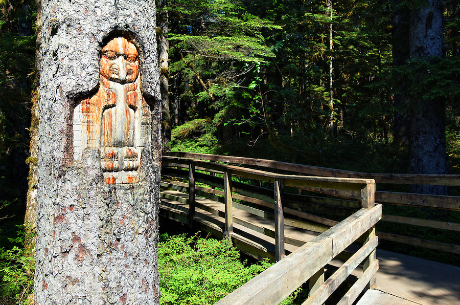 Tlingit trail marker carved in tree, Forest Loop Trail, Bartlett Cove, Glacier Bay National Park, Alaska, USA
