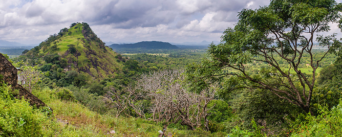 Panoramic photo of a view from Dambulla Cave Temples, Dambulla, Central Province, Sri Lanka, Asia. This is a panoramic photo of the view from Dambulla Cave Temples, Dambulla, Central Province, Sri Lanka, Asia.