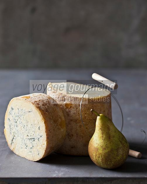 Europe/France/Rhône-Alpes/42/Loire/Sauvain: Fourme de Montbrison de chez Hubert Tarit - Fromagerie des Hautes Chaumes, fromage au lait  cru de vache, à pâte persillée,  //  France, Loire, Sauvain, Montbrison Fourme, French blue-veined cheese of Montbrison, at Hubert Tarit, High Chaumes cheese, raw milk cheese from cows, veined