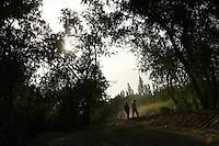 Farmers walk along a dusty track near fields. Dunhuang, Gansu Province. China