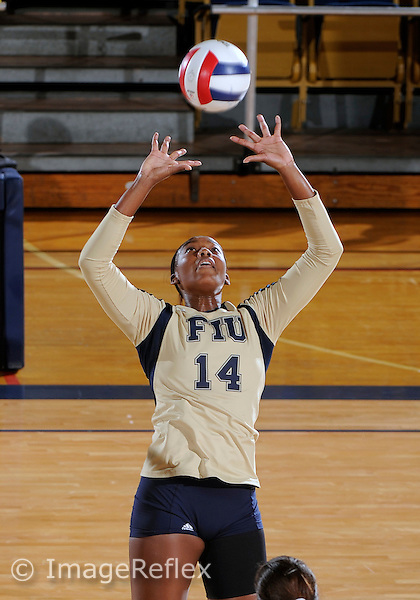 Florida International University women's volleyball player Renele Forde (14) plays against Florida A&M University.  FIU won the match 3-0 on September 11, 2011 at Miami, Florida. .