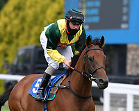 Apache Jewel ridden by Kieran O'Neal goes down to the start of  The Crouch's Down Maiden Auction Fillies Stakes during Horse Racing at Salisbury Racecourse on 13th August 2020