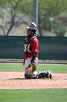 Alexis Olmeda - Arizona Diamondbacks 2016 extended spring training (Bill Mitchell)