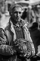Europe/France/Languedoc-Roussillon/11/Aude/Carcassonne: Emile Rubio vendeur d'oeufs et de volailles sur le marché place Carnot [Non destiné à un usage publicitaire - Not intended for an advertising use]