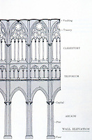 Visual Arts:  Gothic Cathedral--wall elevation.  David Macauley, CATHEDRAL: THE STORY OF ITS CONSTRUCTION.  pHOTO '87.