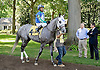Look Who's Ritzy before The Christiana Stakes at Delaware Park 9/15/12