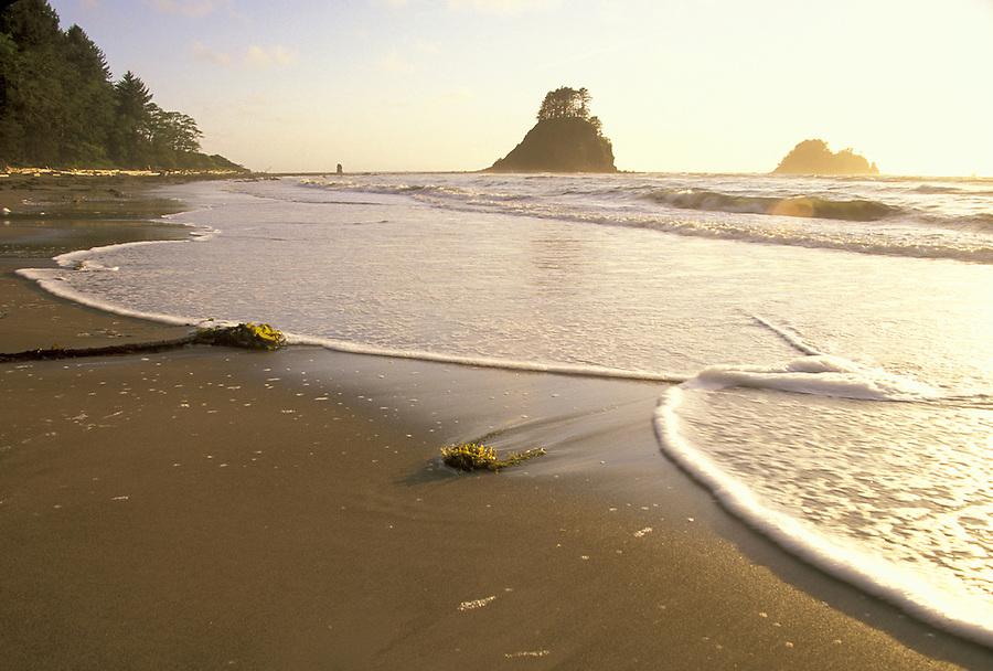 Ocean surf, Cape Alava, Flattery Rocks National Wildlife Refuge, Pacific Ocean, Washington