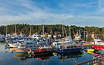 British Columbia, Canada<br /> View of boats, in Ganges Harbor, Saltspring Island. Canadian Gulf Islands