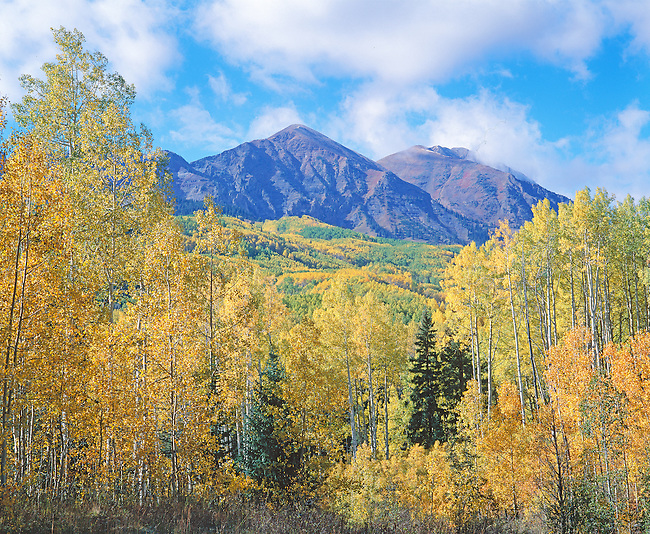 Autumn sunlight on mountains and aspen trees, Kebler Pass, CO.