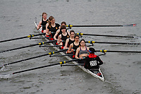 Crew: 202 Jesus College (Cambridge) Boat Club B<br /> <br /> Women's Head of the River (WeHoRR) 2017<br /> <br /> To purchase this photo, or to see pricing information for Prints and Downloads, click the blue 'Add to Cart' button at the top-right of the page.