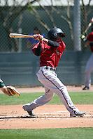 Robelys Reyes - Arizona Diamondbacks 2016 spring training (Bill Mitchell)