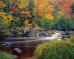 Pattison State Park, WI:Small falls on the Black River with grasses and hardwood forest in fall color