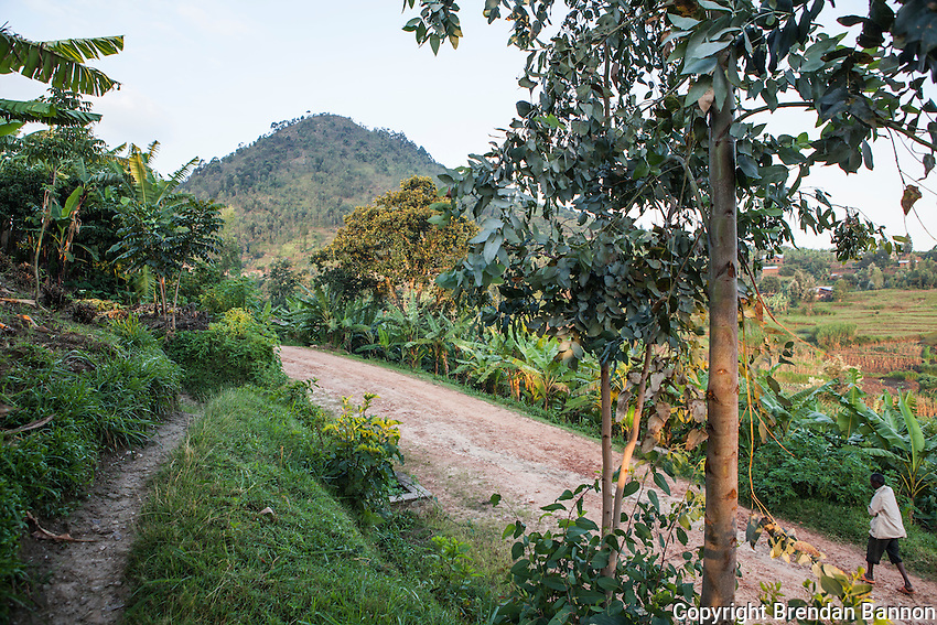 """""""That one is Rwimambure Hill. The name has no meaning though, which is strange because every name has a meaning in Rwanda."""" - Niyamukiza, a local woman. Kayenze, Rwanda. Photo by Brendan bannon. March 2, 2014"""