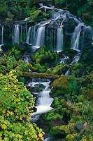 Twin Falls Creek<br /> Gifford Pinchot National Forest<br /> Cascade Range, Washington